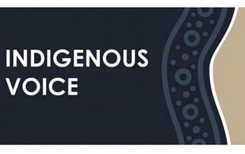 Indigenous Voice